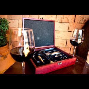 Kit para Vinho Profissional 8 Peças Simona